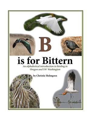B is for Bittern Cover