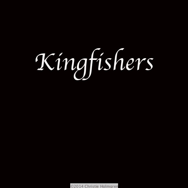 king_fishers