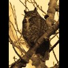 Great<br/>Horned<br/>Owl Sepia
