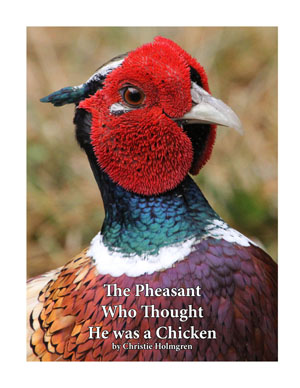 The Pheasant Who Thought He was a                 Chicken Book Cover