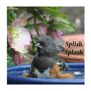 Splish Splash Cover